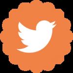 50-px-Twitter-Bird-Icon-01
