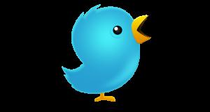 twitter-logo-birddfd