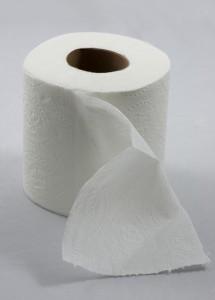 toiletpaper2